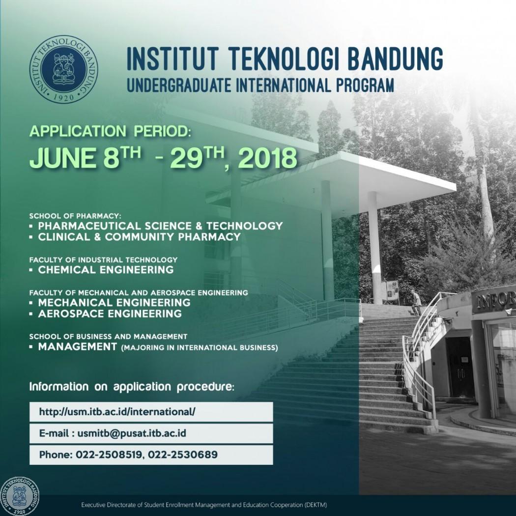 Undergraduate international program application
